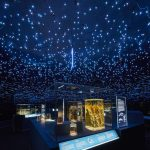 Photo : © The Trustees of the Natural History Museum, London